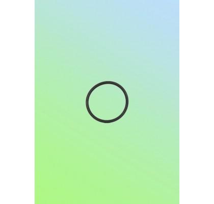 Кольцо-манжета